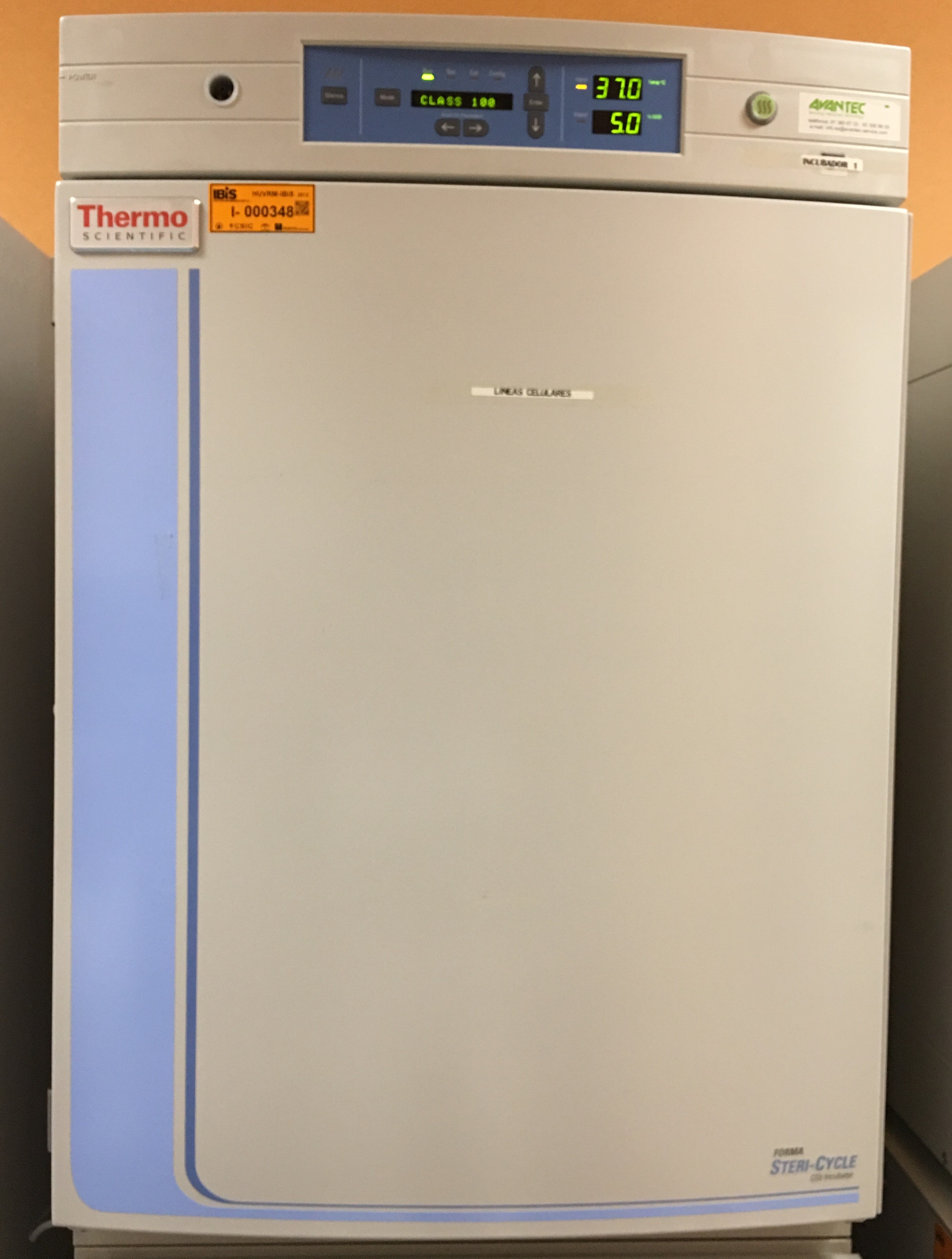 Incubador de CO2 (Thermo Scientific). 26 unidades
